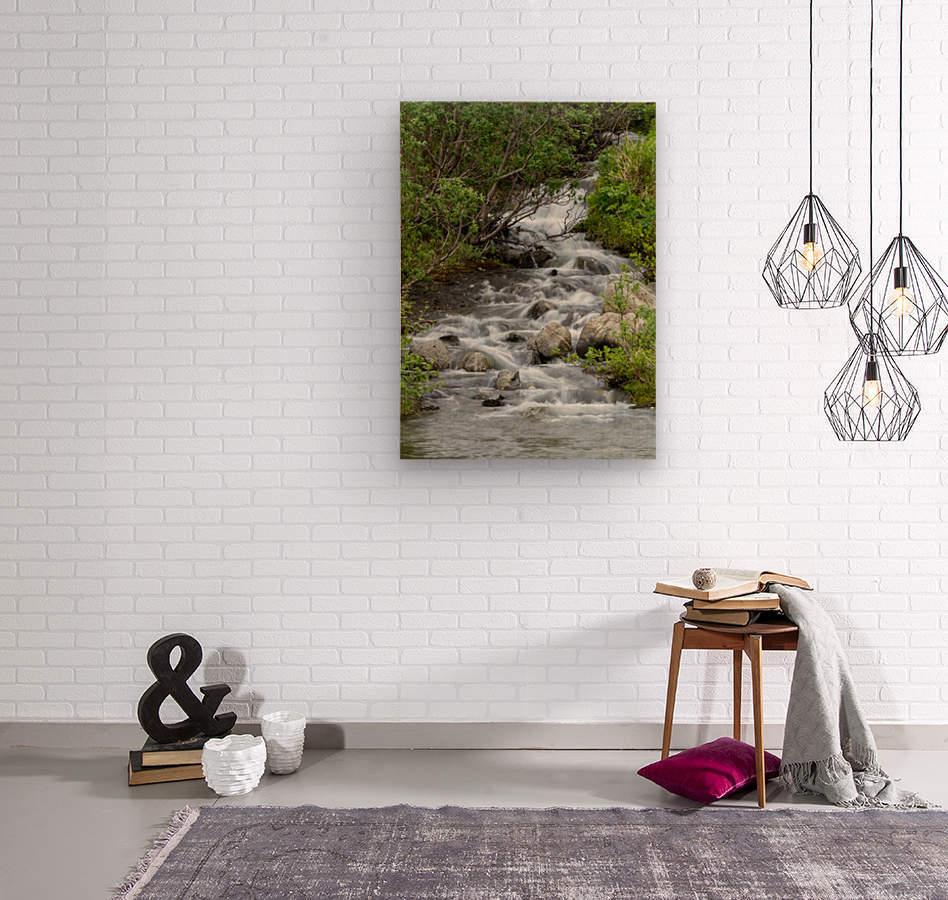 Beautiful Waterfall Picture in Alaska  Wood print