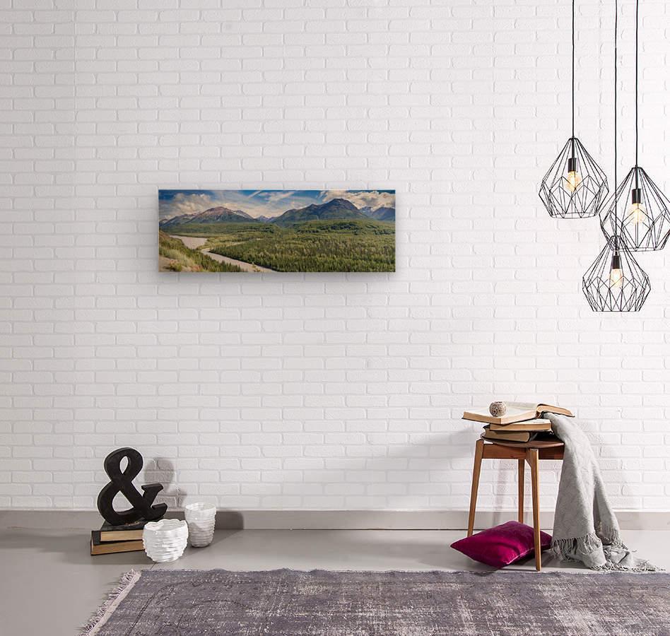 IMG_6941 Pano 113  Wood print
