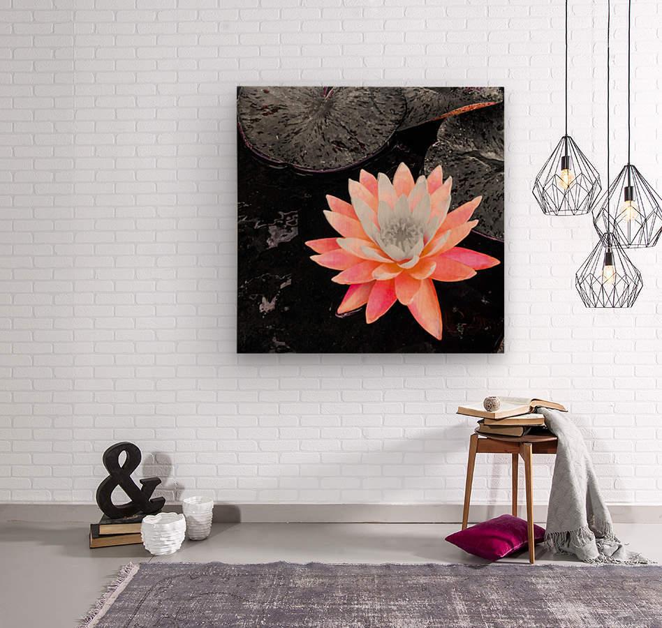 Lotus  Impression sur bois