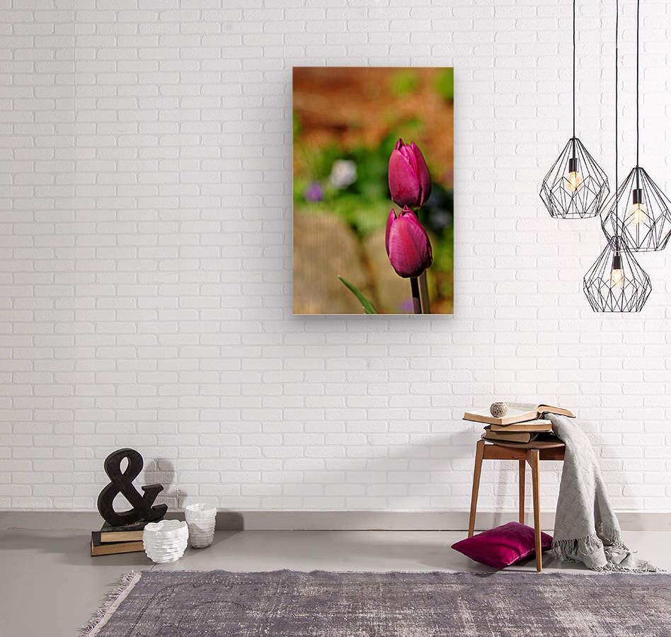 Simple Beauty  Wood print