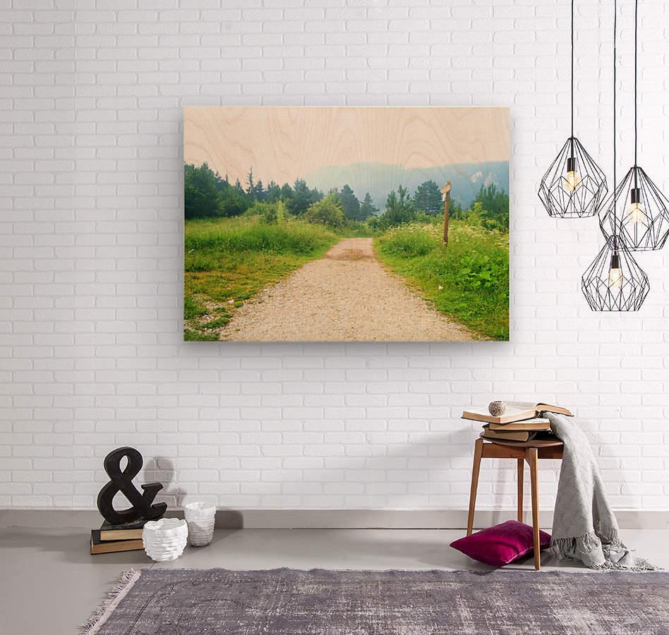 dream road  Wood print