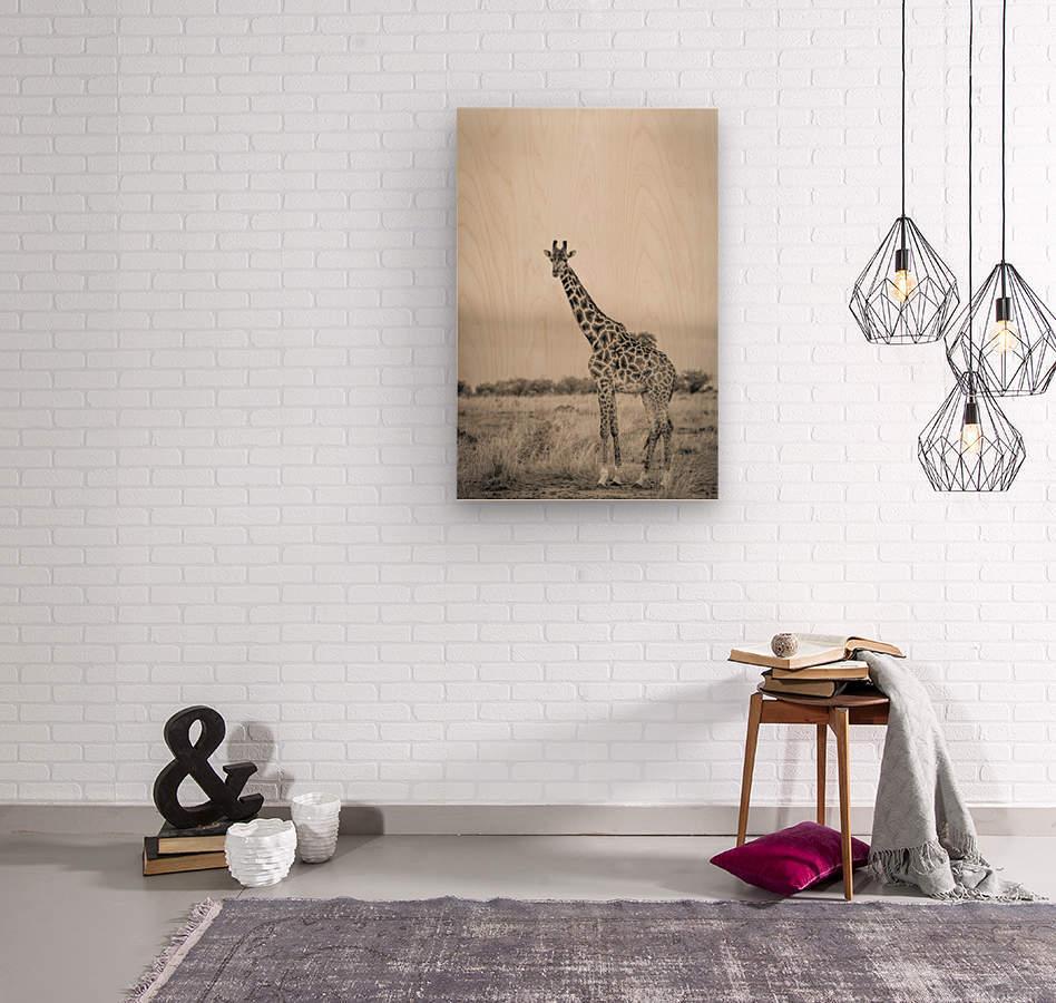 Majestic Giraffe by www.jadupontphoto.com  Wood print