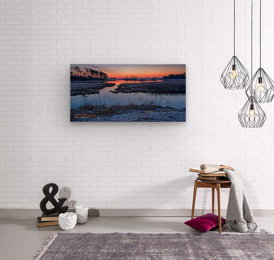 Black Duck Pool - APC-376  Wood print