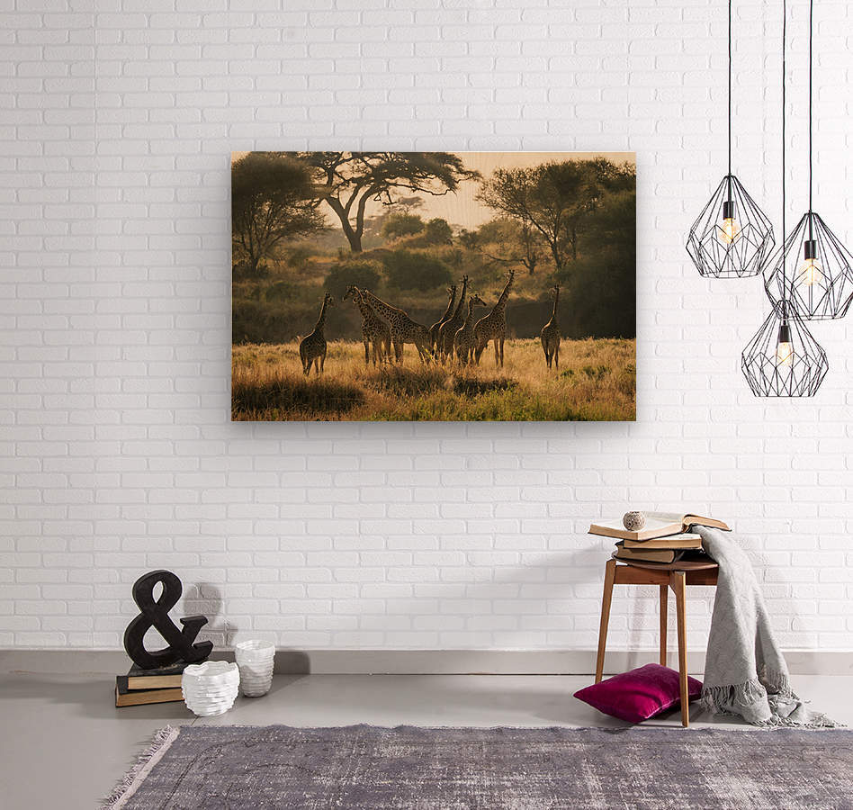 _49R8818  Wood print