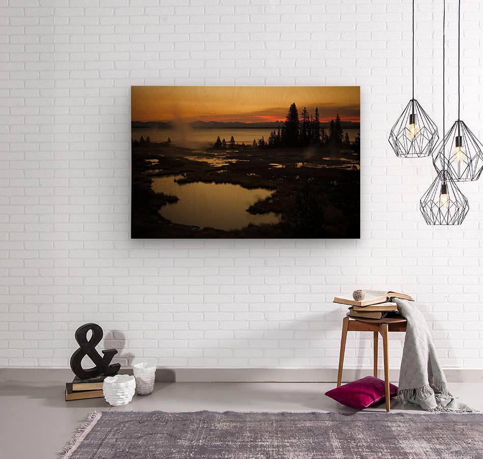 _S9A2665  Wood print