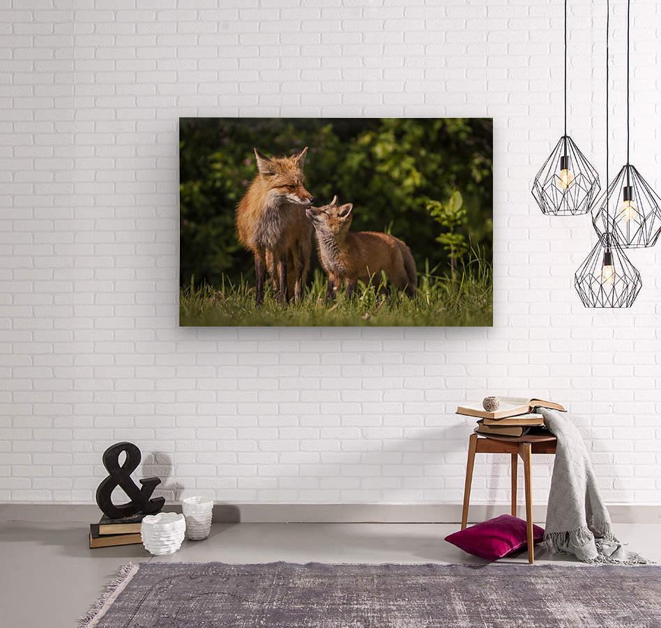 Motherly Love- 2  Wood print