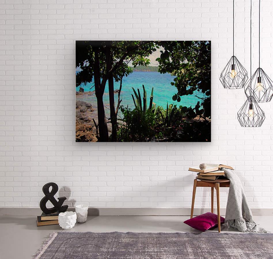 Tropical Waters 1  Wood print