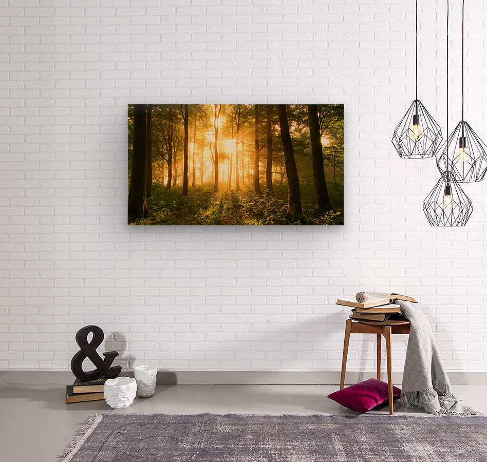 Light in the Forest.  Wood print