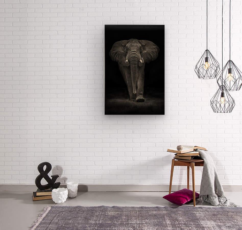Ngorongoro Bull  Wood print