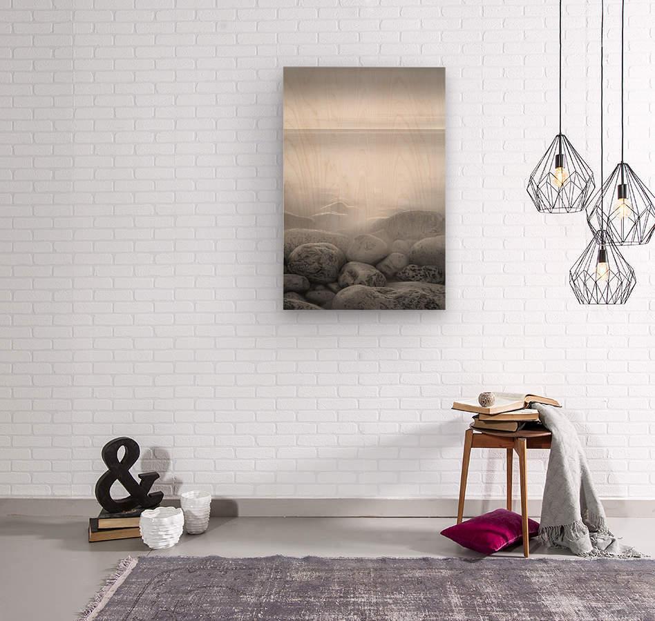 Moog Island  Wood print
