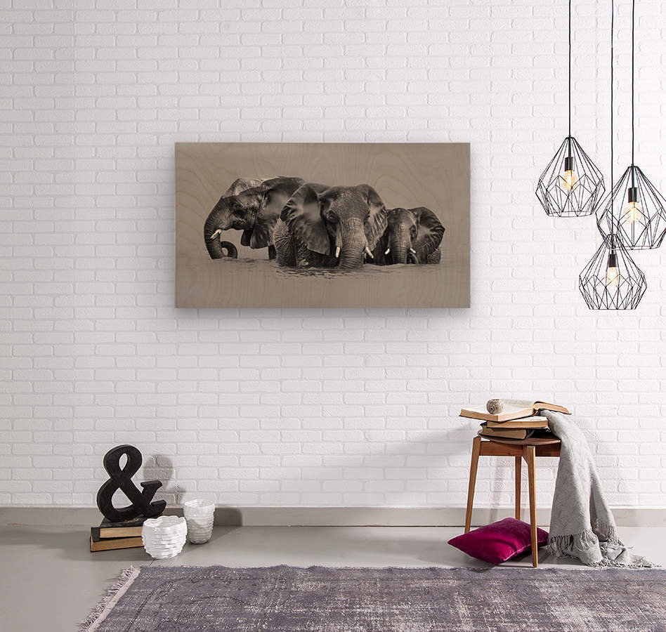 Elephant Crossing The River  Wood print
