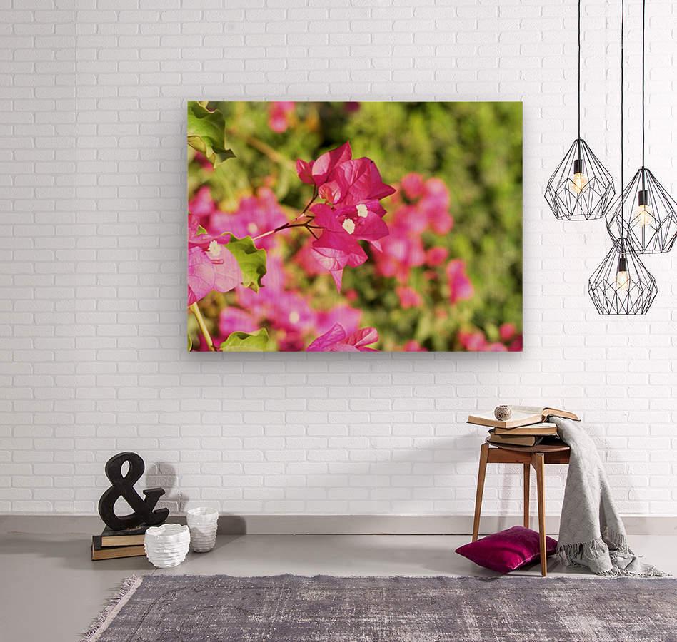 Flower39  Wood print