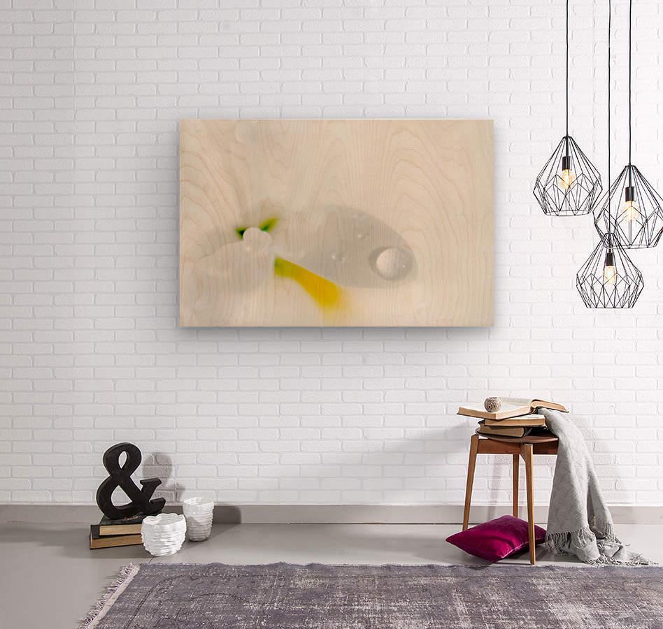 One Droplet  Wood print