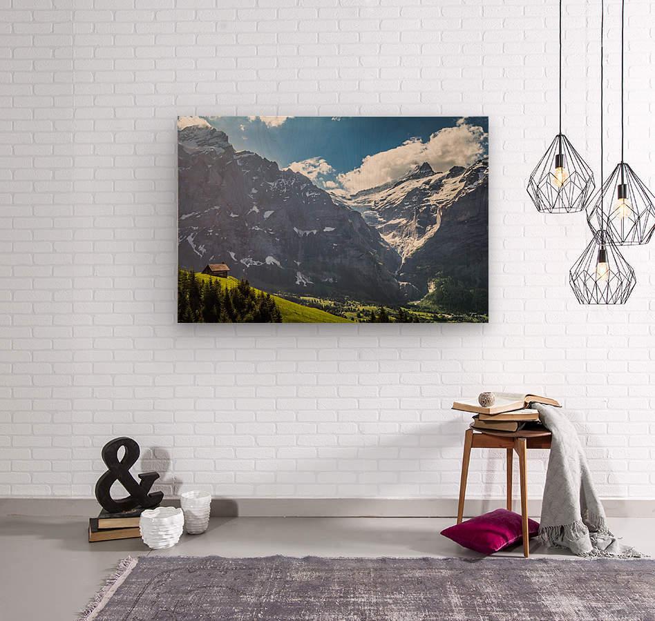 Hut Overlook  Wood print