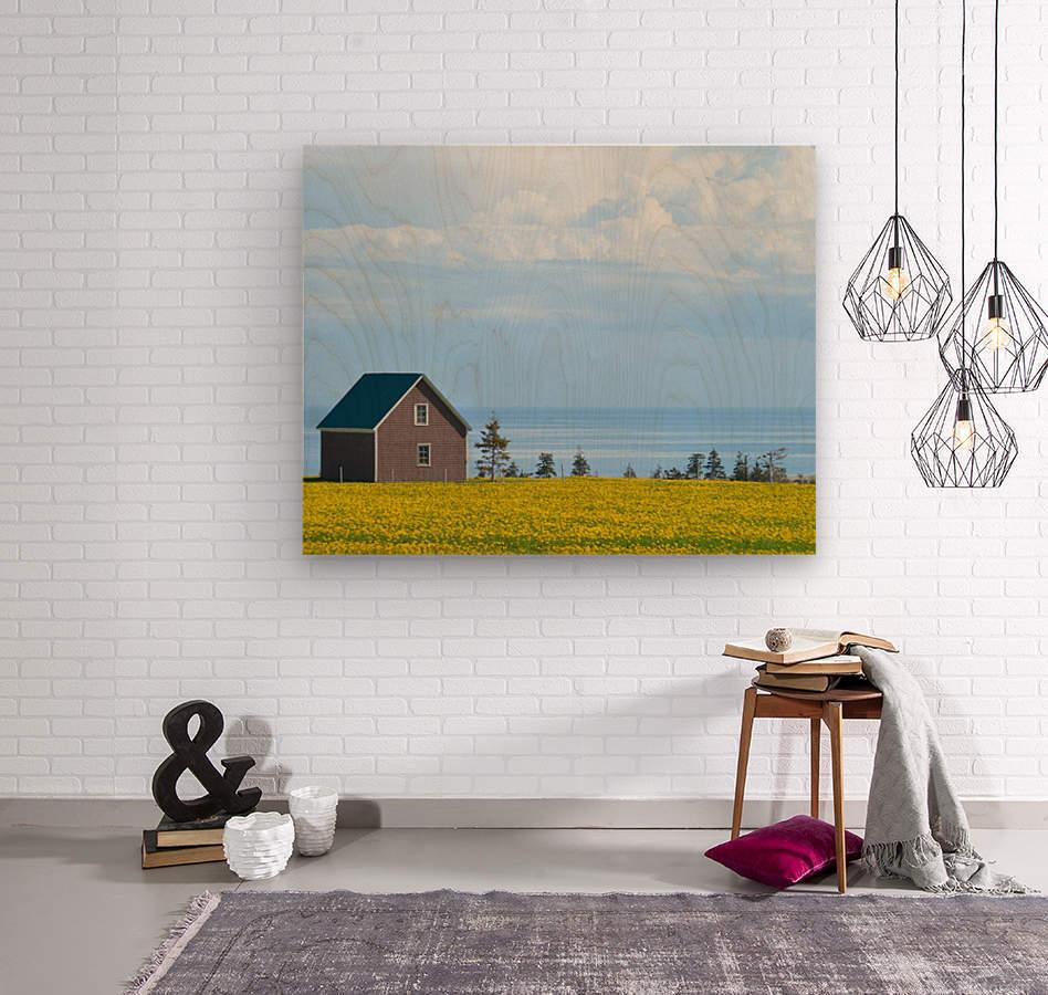 Prince Edward Island landscape  Impression sur bois