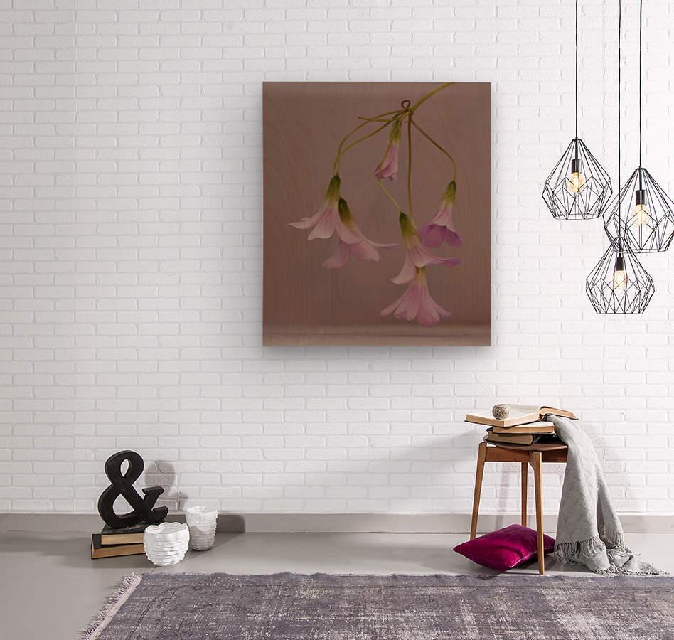 Pretty in pink  Impression sur bois