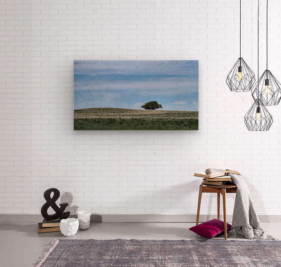 Prairie pleasantry  Wood print