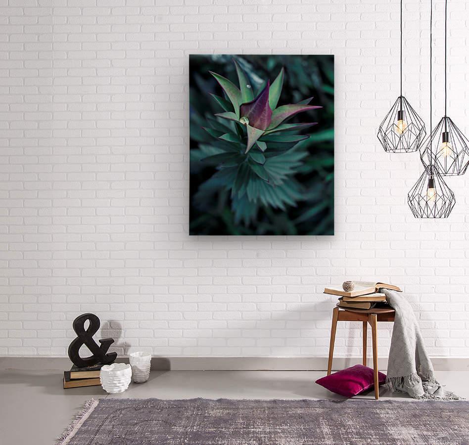 Funky flora  Wood print