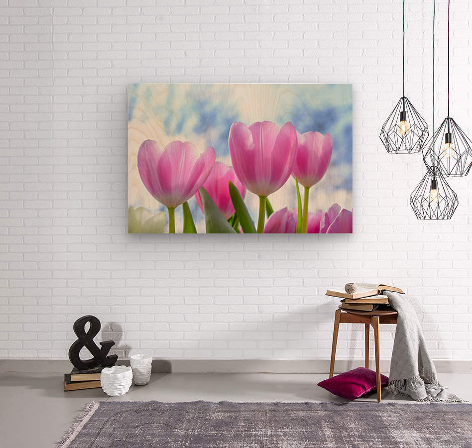 nature, tulip, flora, flower, summer, bright, petal, season, color, floral, growth, blooming, freshness,  Wood print