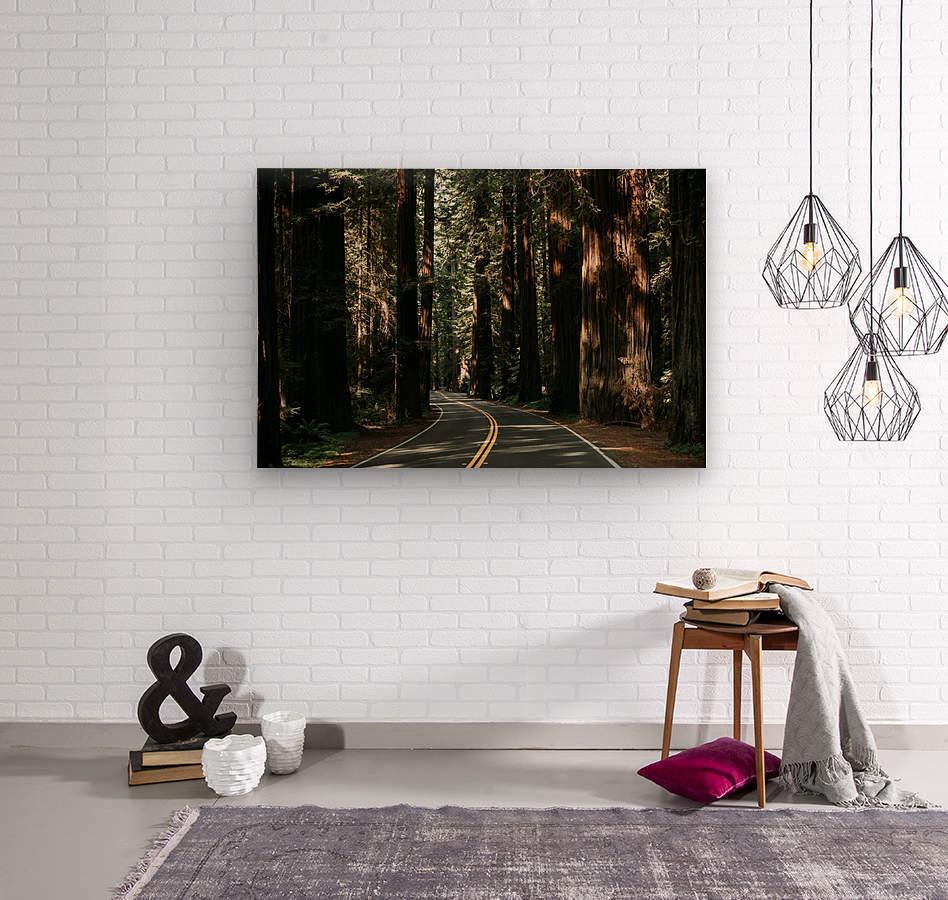 Avenue of the Giants  Impression sur bois