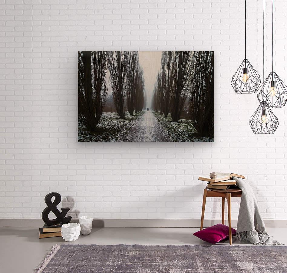 Symetric walk path in fog  Wood print