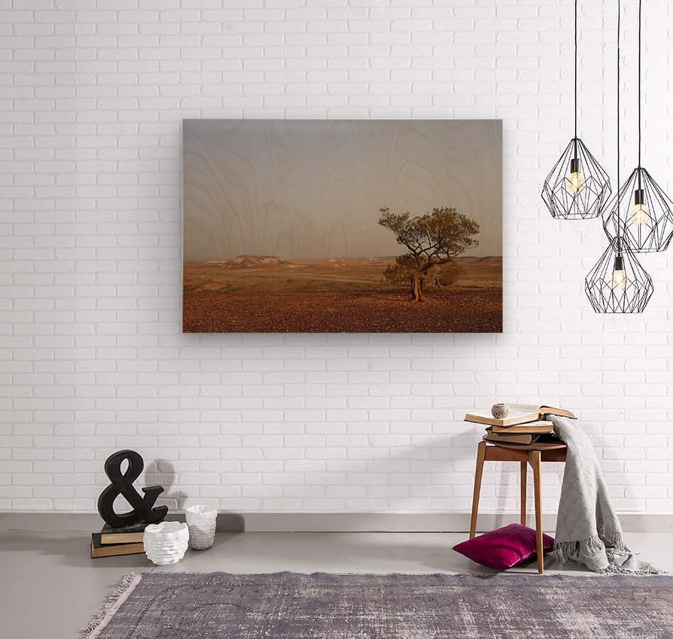 The breakaways South Australia  Wood print