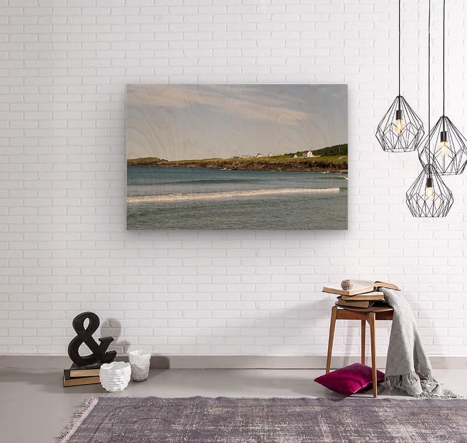 Elliston Newfoundland Coastline 15  Wood print