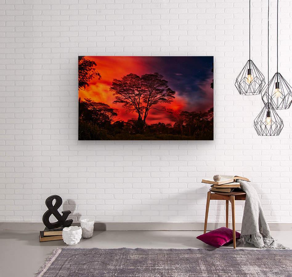 _IBC3569  Wood print