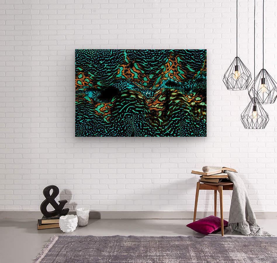 Giant Clam  Wood print