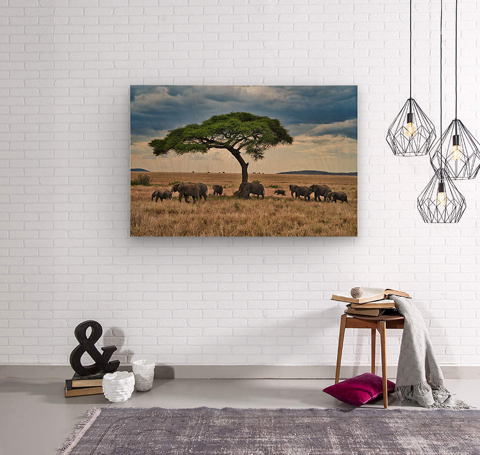 DSC02636  Wood print