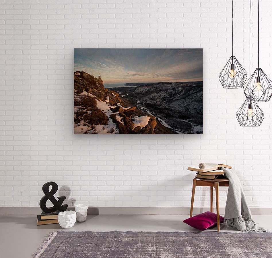 Franey Winter  Wood print