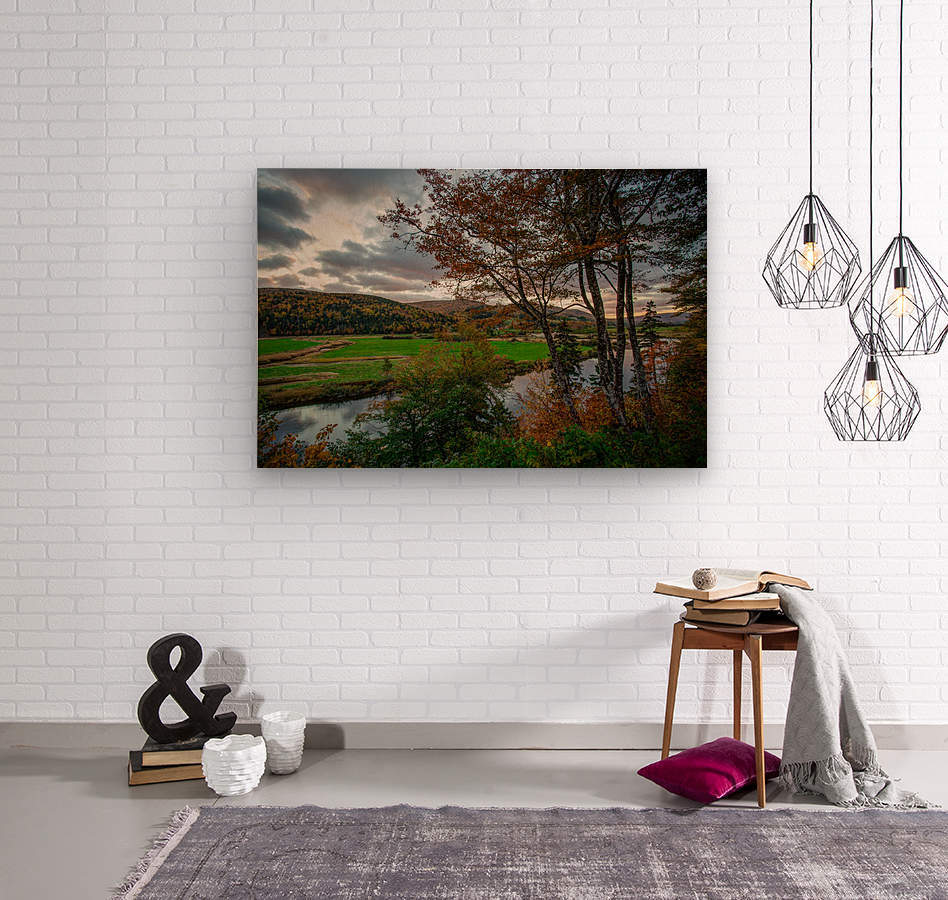 Serene Valley  Wood print