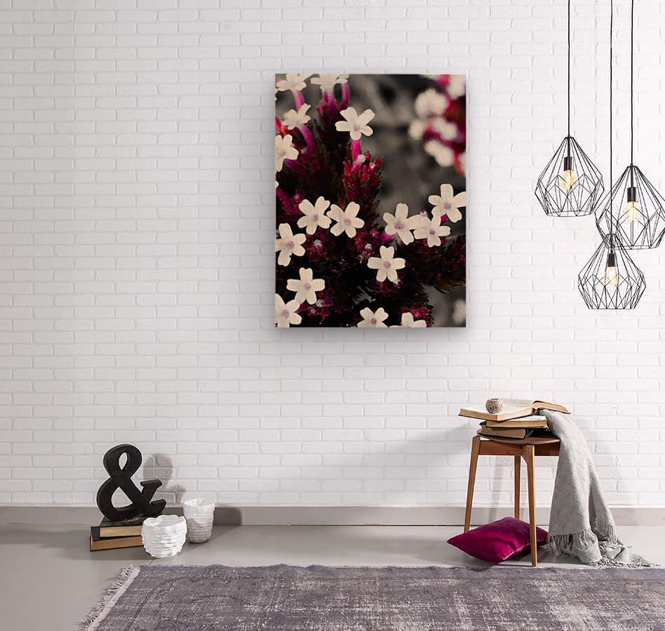 White bloom  Impression sur bois