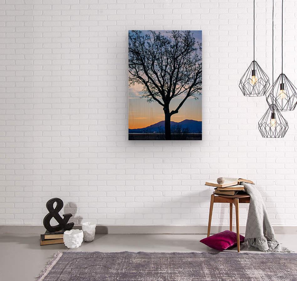 20190101 DSC_0107  Wood print