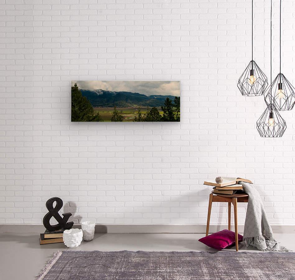 20190209 IMG_3182  Wood print