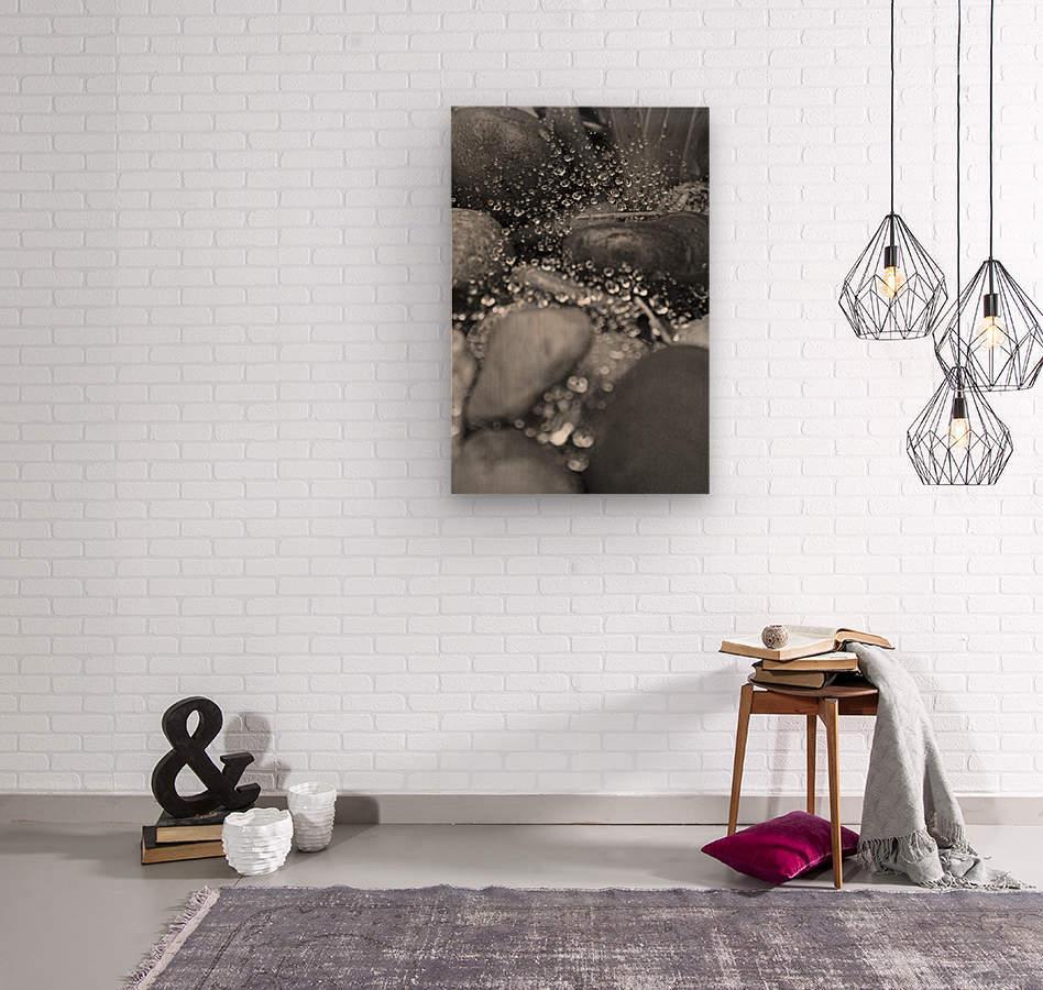 Spiderweb Raindrops B&W  Wood print
