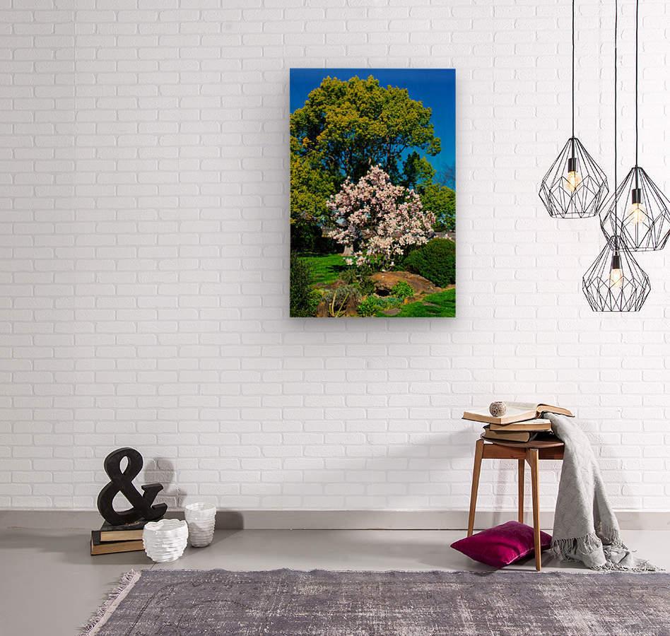 20190316 DSC_0146  Wood print
