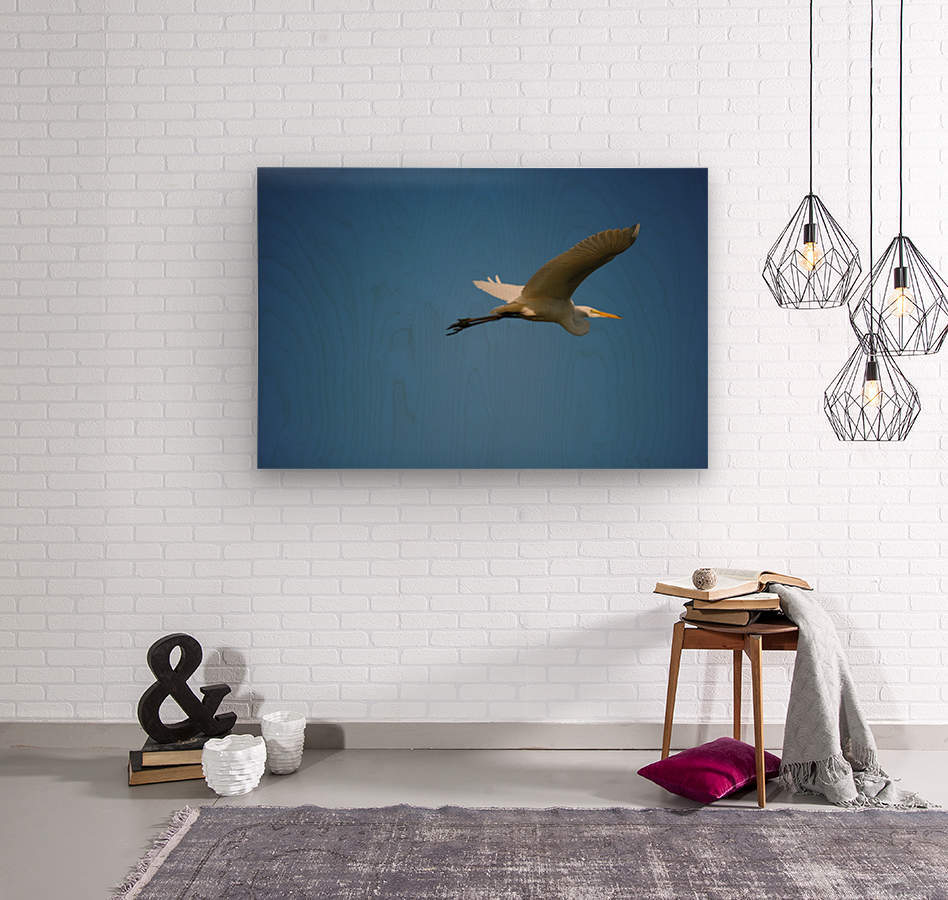 Egret Flying  Wood print