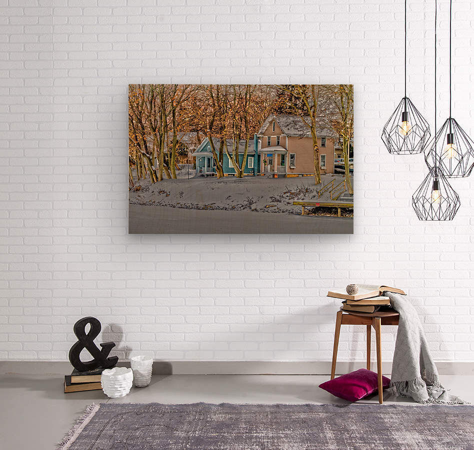 Canalside Living  Wood print
