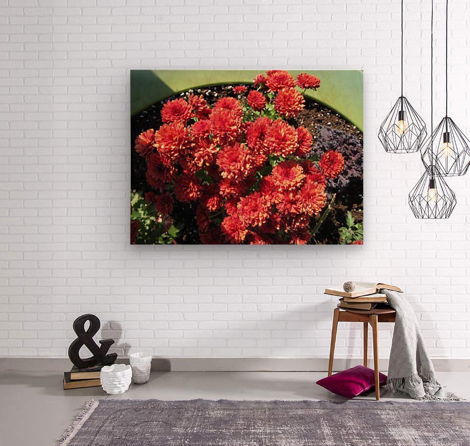 Flower (4)  Wood print