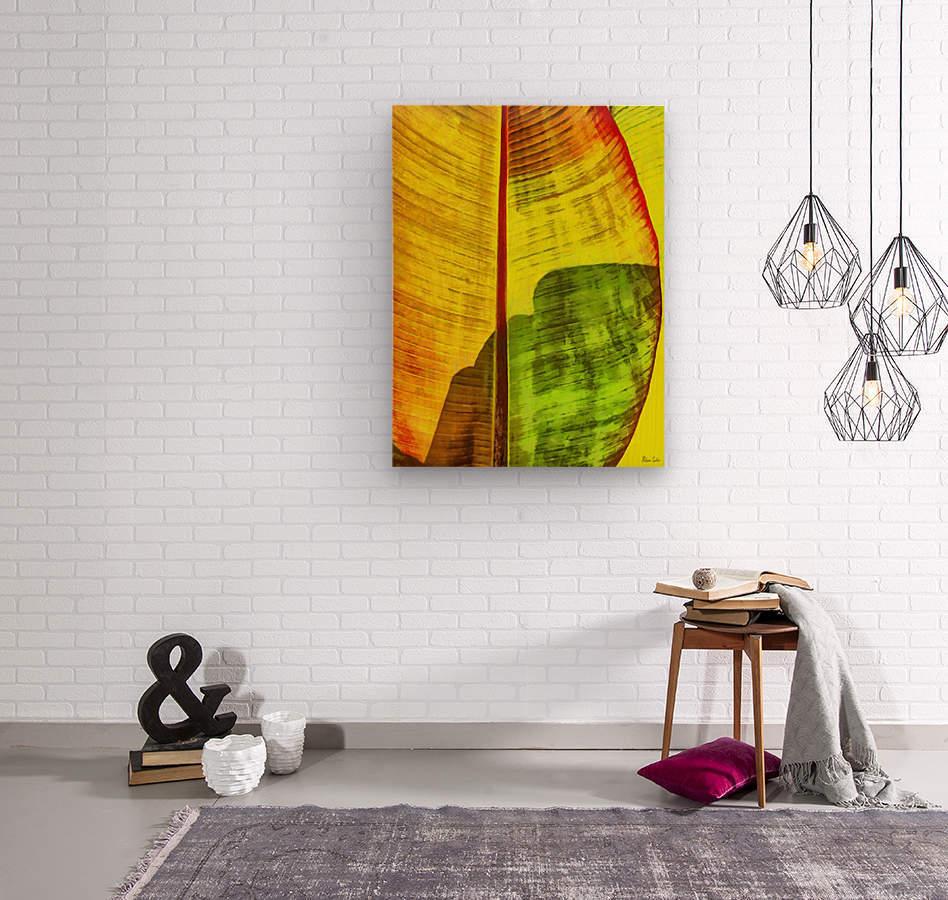 HC0333  Wood print