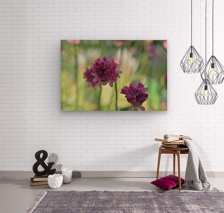 Purple Flowers Photograph  Wood print