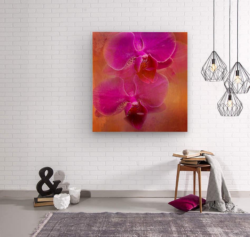 Colorful Phalaenopsis  Wood print