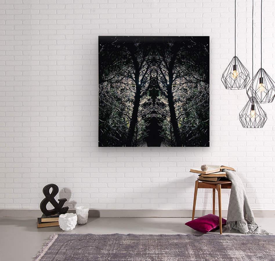 Lord of Shadows  Wood print