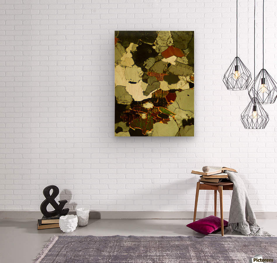 Forest Primeval  Wood print