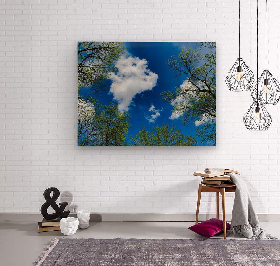 Bliss a Sky   Impression sur bois