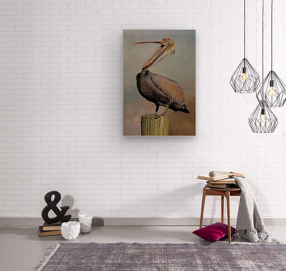 Belly Laugh-Brown Pelican   Wood print