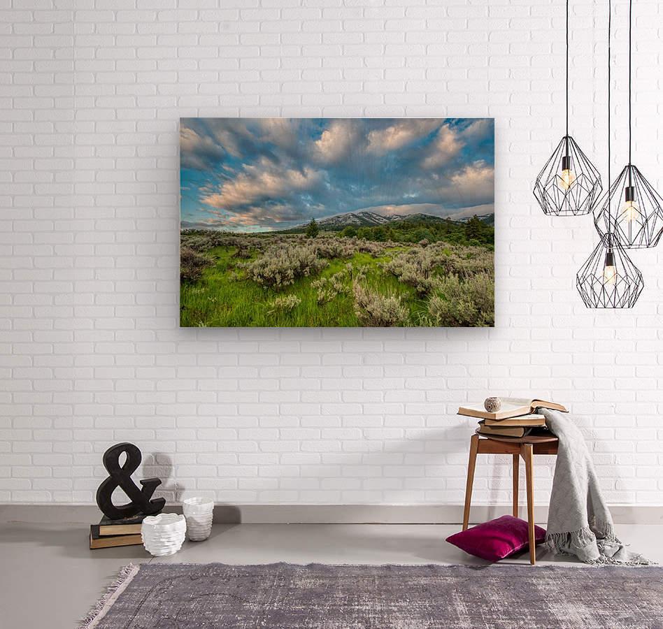 Goodenough Canyon Landscape  Wood print