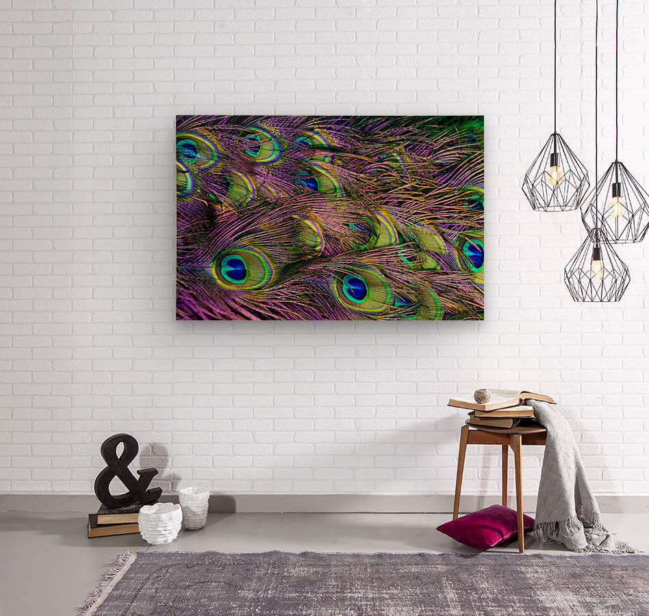 green purple and blue peacock feather digital wallpaper  Wood print
