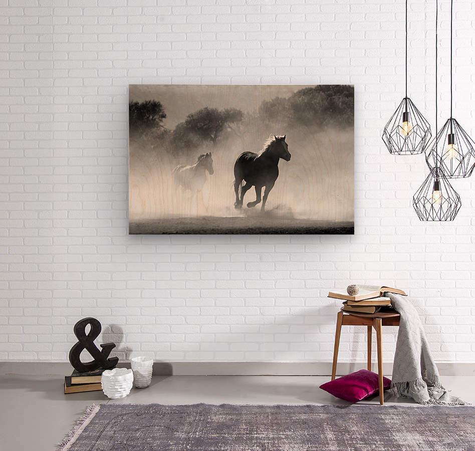 horse herd dust nature wild  Wood print